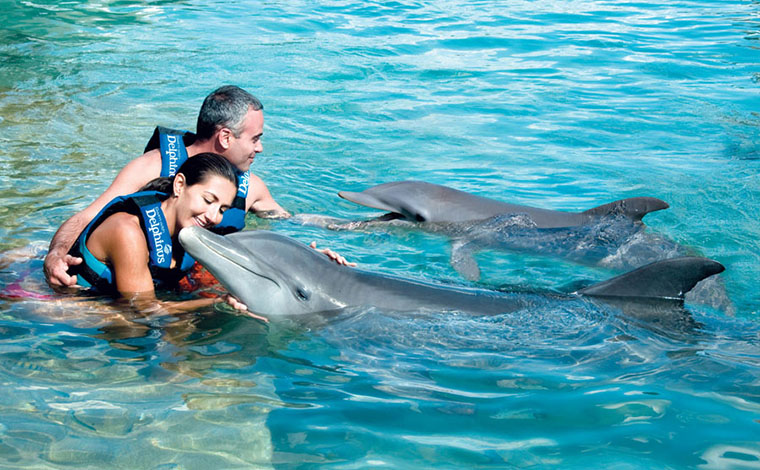 Couples Dreams - Dolphin Swim Riviera Maya