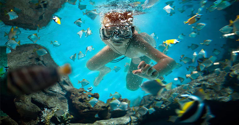 Cancun Underwater Museum Snorkeling
