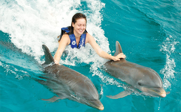 Dolphin Ride + Xel-ha Tour