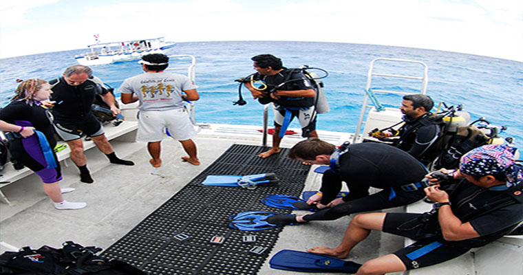 Scuba PADI Open Water Referral