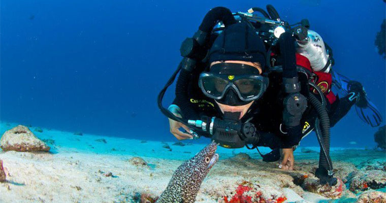 Scuba Dive Package E