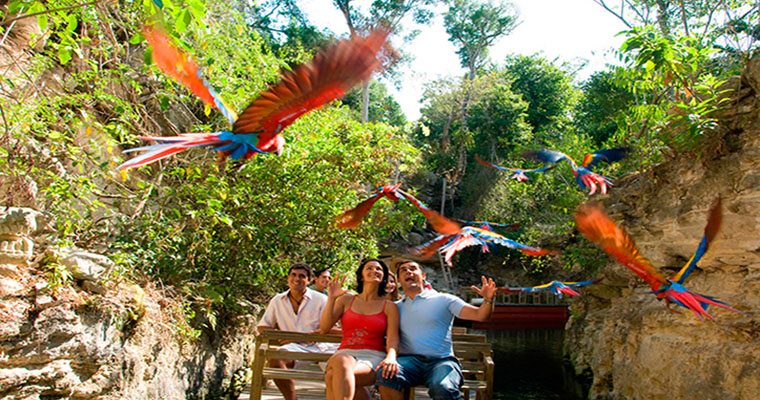 Private Tulum & Xcaret