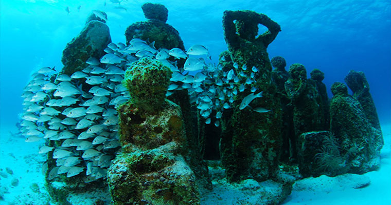 Snorkel in the Cancun Underwater Museum