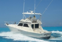 Fishing Charter 31 ft boat